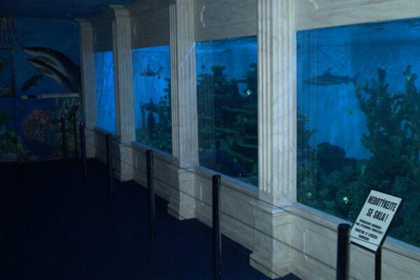 Mořský-svět-konečná-podoba-1024x686