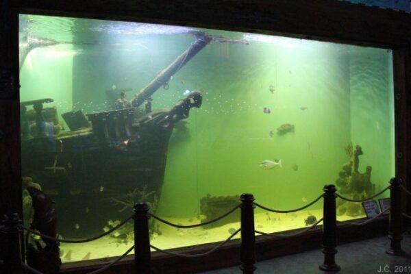 akvárium-Mořský-svět-Bounty